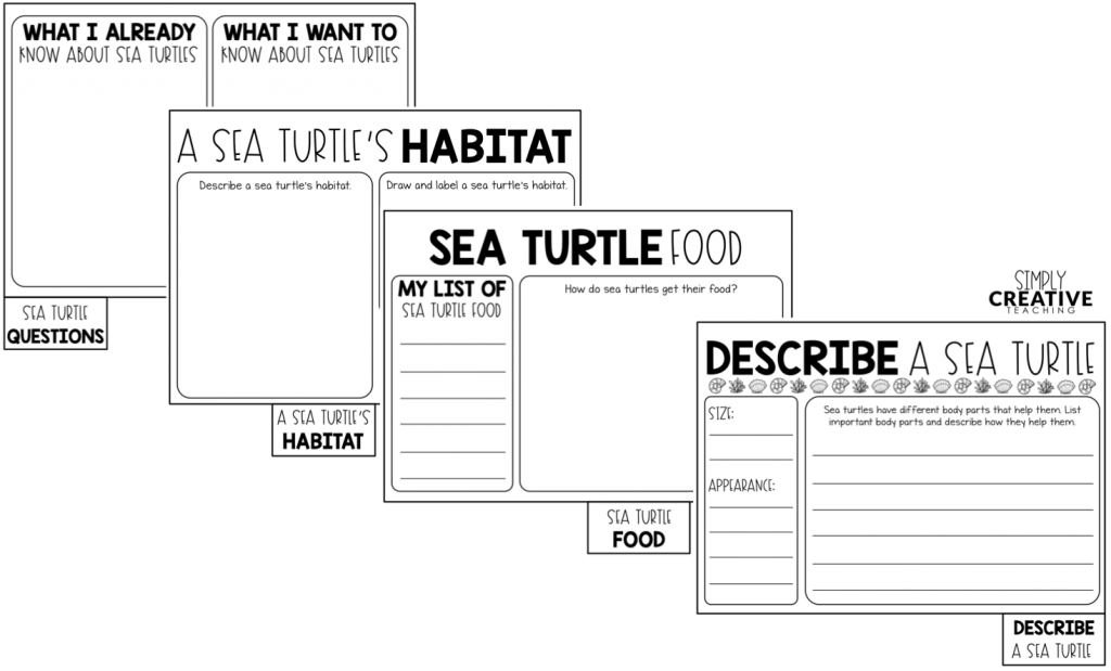 inside of animal booklets